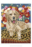 Golden Boy Retriever Poster by Carolee Vitaletti