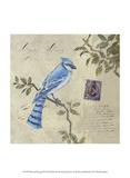 Bird & Postage III Posters par Rick Novak
