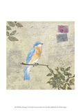Bird & Postage I Print by Rick Novak