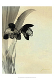 Orchid Blush Panels I Prints by James Burghardt