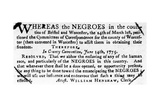 Emancipation Notice, 1775 Giclee Print