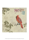 Bird & Postage IV Prints by Rick Novak