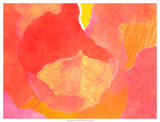 Cabbage Rose II Giclee Print by Carolyn Roth