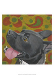 Dlynn's Dogs - Kendall Prints by Dlynn Roll