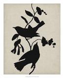 Audubon Silhouette IV Giclee Print by Vision Studio