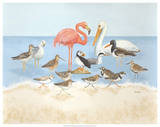 Seabird Summit Giclee Print by Wendy Russell