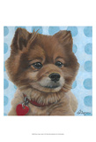 Dlynn's Dogs - Jordan Prints by Dlynn Roll