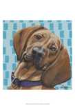 Dlynn's Dogs - Dali Poster by Dlynn Roll