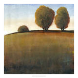 Afternoon Light IV Giclee Print by Tim O'toole