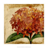 Vibrant Floral III Giclee Print by  Vision Studio