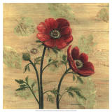 Anemone on Wood Giclee Print by Wendy Russell
