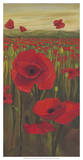 Red Poppies in Field II Giclee Print by Julie Joy