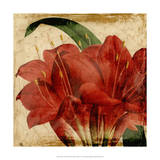 Vibrant Floral VIII Giclee Print by Vision Studio