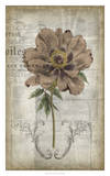 French Floral II Giclee Print by Jennifer Goldberger