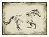 Equine Study I Giclee Print by Ethan Harper