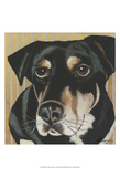 Dlynn's Dogs - Ginger Prints by Dlynn Roll