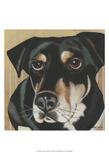 Dlynn's Dogs - Ginger Prints by Dlynn Roll