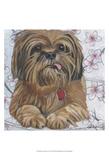 Dlynn's Dogs - Cody Posters by Dlynn Roll