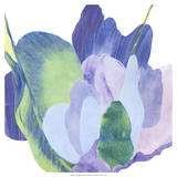 False Indigo II Giclee Print by Carolyn Roth