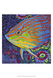 Brilliant Tropical Fish I Posters by Carolee Vitaletti