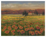 Poppy Path to Home I Giclee Print by Julie Joy
