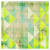 Citrus Geometry III Giclee Print by Amy Lighthall