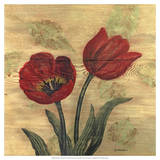 Tulip on Wood Giclee Print by Wendy Russell