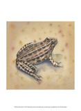 Pond Critters I Prints by Wendy Russell