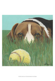 Dlynn's Dogs - Sunny Prints by Dlynn Roll