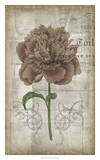 French Floral IV Giclee Print by Jennifer Goldberger