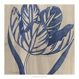 Indigo Tulip Giclee Print by Chariklia Zarris