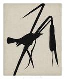 Audubon Silhouette II Giclee Print by Vision Studio