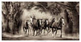 The Chase II Giclee Print by David Drost