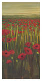 Red Poppies in Field I Giclee Print by Julie Joy