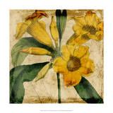Vibrant Floral V Giclee Print by Vision Studio