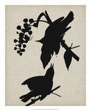 Audubon Silhouette III Giclee Print by Vision Studio