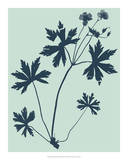 Indigo & Mint Botanical Study III Giclee Print by  Vision Studio
