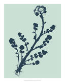 Indigo & Mint Botanical Study II Giclee Print by  Vision Studio