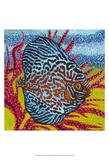 Brilliant Tropical Fish II Affiches par Carolee Vitaletti