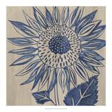 Indigo Sunflower Giclee Print by Chariklia Zarris