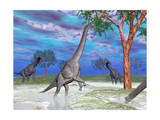 Brachiosaurus Dinosaurs Grazing on Trees Prints