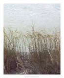 Through the Dunes II Giclee Print by Pam Ilosky