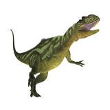 Yangchuanosaurus, a Theropod Dinosaur from the Jurassic Period Stampa