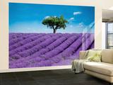 Provence Wall Mural Wall Mural