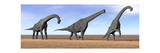 Three Brachiosaurus Dinosaurs Standing in the Desert Prints
