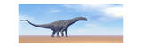 Large Argentinosaurus Dinosaur Walking in the Desert Poster