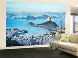 Rio Wall Mural - Duvar Resimleri