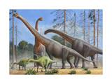 Giraffatitan and Dicraeosaurus Dinosaurs Grazing in a Prehistoric Environment Posters