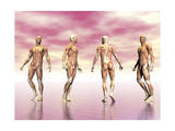 Male Muscular System from Four Points of View, Pink Background Posters