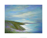 Pacific Coast Premium Giclee Print by Sheila Finch